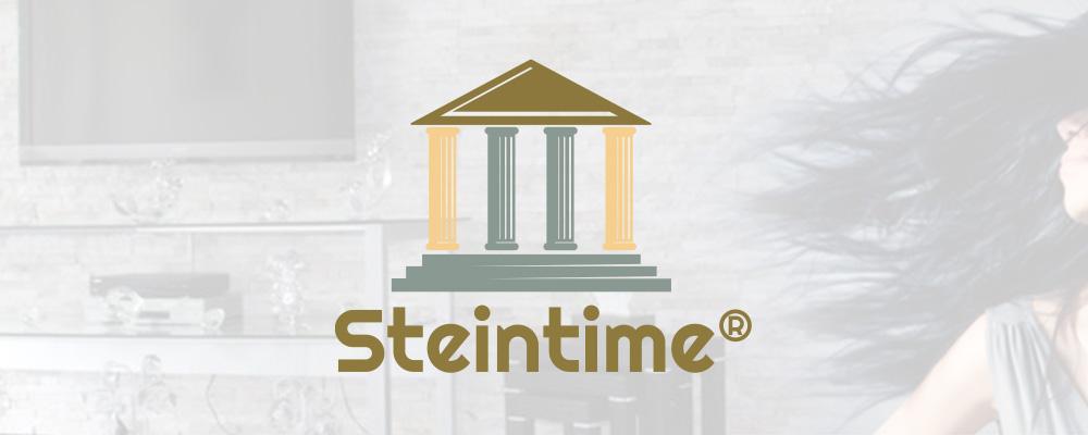 Steintime Logo